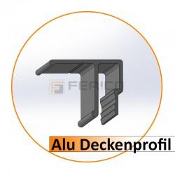 Alu - Deckenprofil - Preis / Lfm.